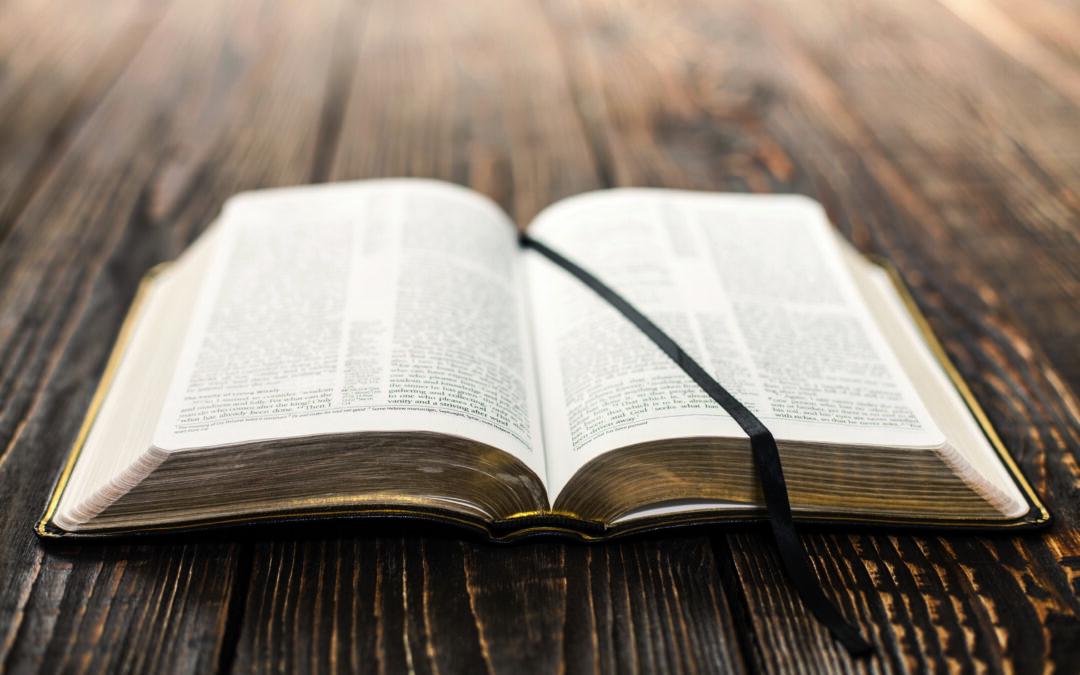 Orar la Palabra. Marcos 8,27-30: ¿Vosotros, quién decís que soy yo?